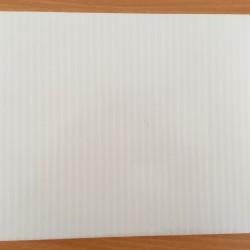 POLICARBONATO CELULAR BLANCO OPAL 10mm